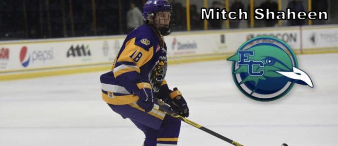 Mitch-Shaheen